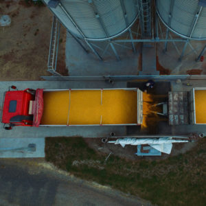 maize-truck